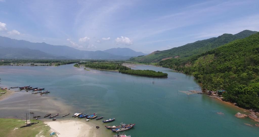 One of the restored mangrove areas Phu Loc, Vietnam.