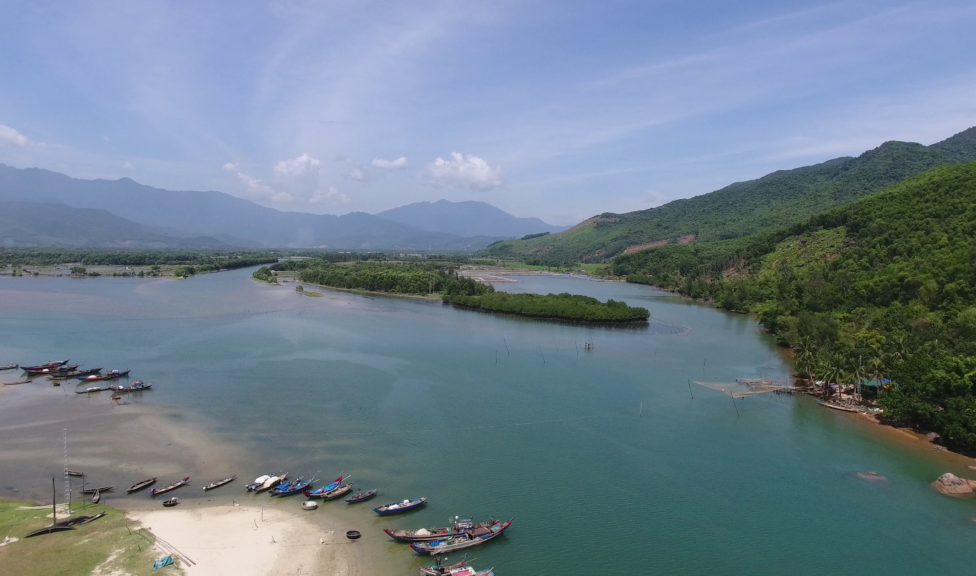 One of the restored mangrove areas Phu Loc, Vietnam.